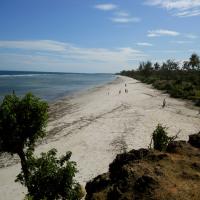 View of Msambweni Beach from Mwaembe